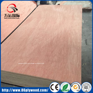 18mm Commercial Poplar Plywood with Bintangor/Okoume Face pictures & photos