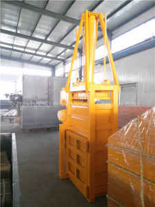 Vertical Packing Machine pictures & photos