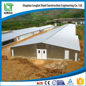 Prefabricated Chicken Farm Steel Structure Building pictures & photos
