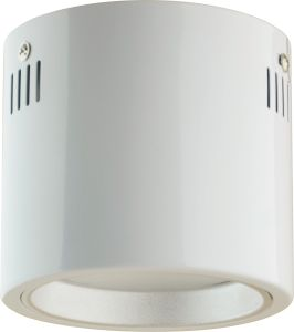 26W LED Surface Mounted Downlight for Commercial Lighting (GSE966) pictures & photos