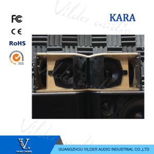 Kara 2-Way Dual 8inch Speaker Full Range Line Array Speaker Professional pictures & photos