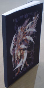 3D Lenticular Book Cover pictures & photos