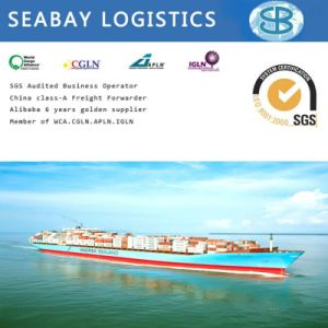 Ocean Freight/Shipping Cost/Freight Forward/Sea Freight/Container Shipping From China Mombasa Kenya pictures & photos
