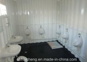 Mobile Toilet / Portable Toilet for Events, Festivals, Party (shs-fp-toilet002) pictures & photos