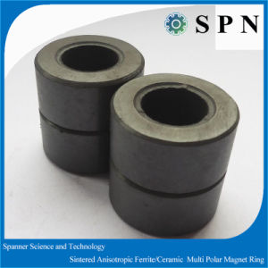 Customized Ferrite Ring Magnet for Steping Motor with Sintered Process pictures & photos