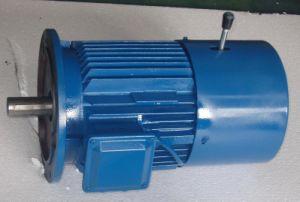 Yej2 Braking Motor (0.18~45kw)