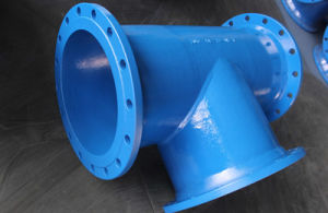 Di Pipe Fittings pictures & photos