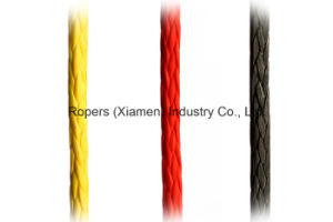 16mm Optima (R433) Ropes for Dinghy-Main Halyard/Sheet-Control Line/Hmpe Ropes pictures & photos