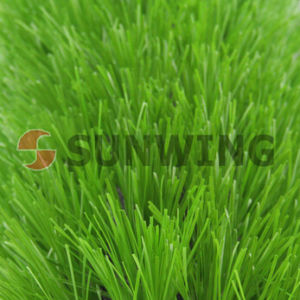 Carpet Cheap Synthetic Soccer Football Wall Artificial Grass pictures & photos