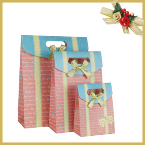 Customized Gift Shopping Paper Bag Gift Bag