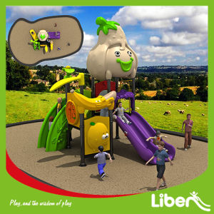 2014 Best Selling Outdoor Sports Playground Equipment (LE. SG. 016) pictures & photos