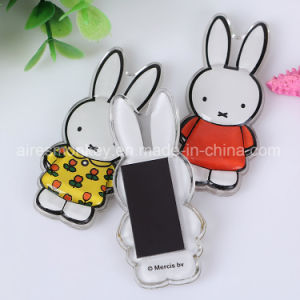 Miffy Acrylic Fridge Magnet Holland Souvenir Magnet pictures & photos