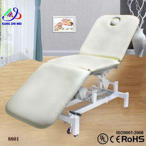 2014 Beauty Salon Facial Massage Bed (8801)