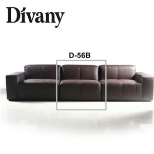 Divany Living Room Furniture/Cheap Sectional Sofas D-56 pictures & photos