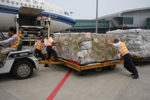 Air Freight to Airport New York/Seattle/Salt Lake City/Washington/Bogota/San Juan/Quito From Xiamen/Guangzhou/Shenzhen/Shanghai/Beijing China pictures & photos