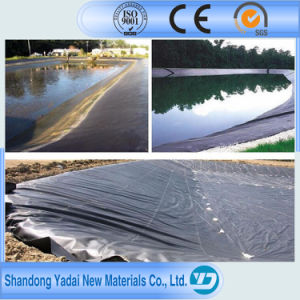 Hot Sale Geocomposite Geomembrane Used for Swimming Pond pictures & photos