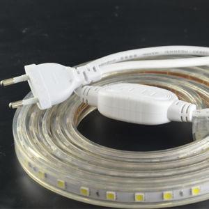Eco-friendly Transparent PVC 8W/M High Volt SMD5050 LED Strip pictures & photos