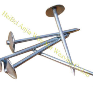 Smooth Body Galvanzied Umbrella Head Roofing Nail pictures & photos