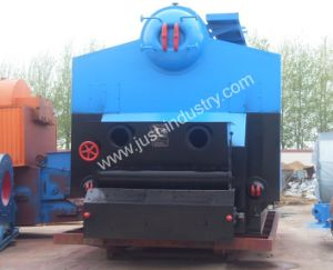 Dzl Coal and Biomass Fired Steam Boilers with 70 Years Experience