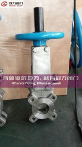 Lug Type As2129 Table D Knife Gate Valve pictures & photos