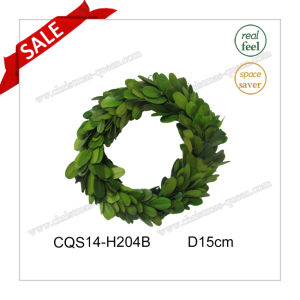 D15cm Wedding Occasion and Decorative Preserved Boxwood Wreath Flower pictures & photos