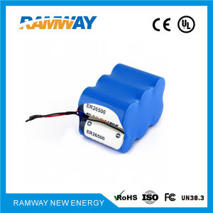 21.6V 6er26500 Lithium Battery Packs for High Voltage Indicators pictures & photos