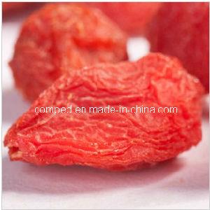 100% Natural Fructus Lycii (goji berry) , 2013 Fresh