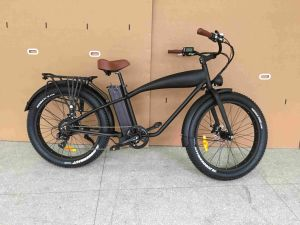 Ce 750W Retro Fat Tire Electric Bike with Rear 8fun Motor pictures & photos