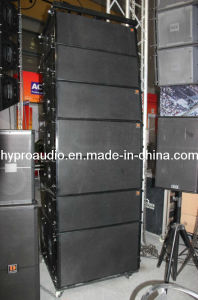Two-Way Dual 10 Inch Line Array (DS2010) pictures & photos