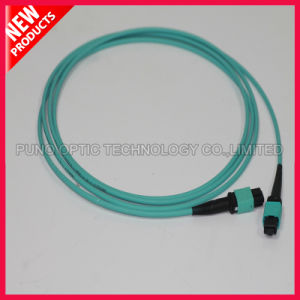 12 Fiber Optical OM3 10G MPO Patch Cord pictures & photos
