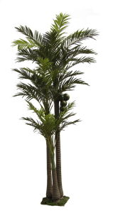 Artificial Plants and Flowers of Coco Palm (GU-1081242-3) pictures & photos