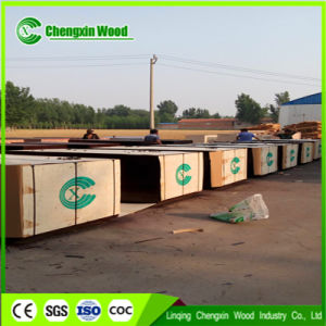 Poplar Core, WBP Glue, Film Faced Plywood/Shuttering Plywood Manufacturer pictures & photos