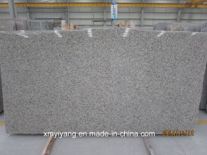 Wholesale China Stone-Tiger Skin White Granite Slab for Countertops (YY-VTSWS) pictures & photos
