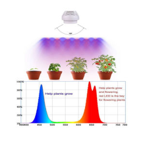 90W Full Spectrum 460-6500k LED Plant Grow PAR Light pictures & photos