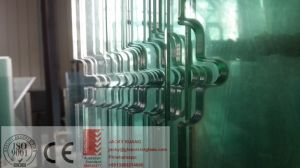 3mm-19mm Clear Toughened Glass for Shower Door/Balustrade/Fencing pictures & photos
