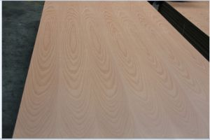 4.8mm Red Beech Veneer Plywood for Furniture in Mexico pictures & photos