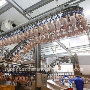 chicken broiler machine