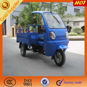 3 Wheel Motorized Cargo pictures & photos