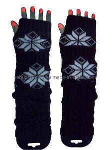 Arm Warmer (XST12001)