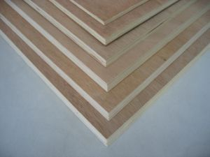 Poplar Core Commercial Plywood Board pictures & photos