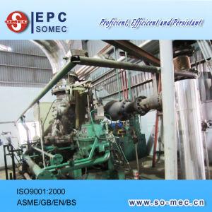 Palm Plantation Power Plant Steam Turbine Generator pictures & photos