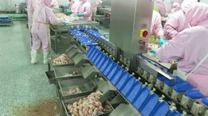 Food Poultry Prawn Weight Sorter Grading Machine pictures & photos