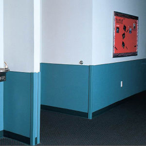 Fireproof Hospital Wall Protection Sheet pictures & photos