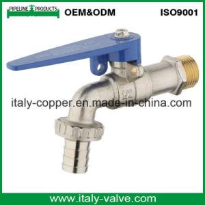 OEM&ODM Quality Morden Type Brass Nickel Plated Bibcock (AV2008) pictures & photos