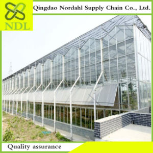 Agriculture Multi Span Commercial Glass Greenhouse pictures & photos