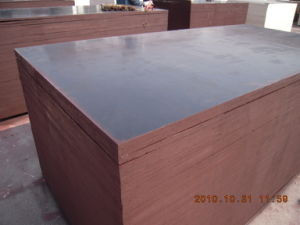 1250*2500mm Size Film Faced Plywood for Construction pictures & photos