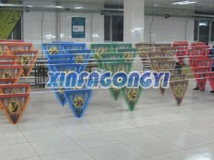 Pennant Flag/Triangle Flag/String Flag/Bunting Flying Flag pictures & photos