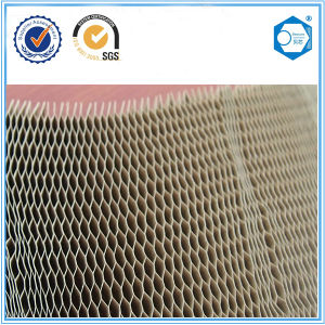 Door Filling Material 25mm Cell Size Paper Honeycomb pictures & photos