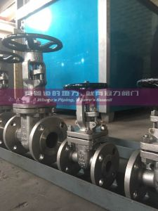 Alloy 20 CN7M Gate Valve pictures & photos
