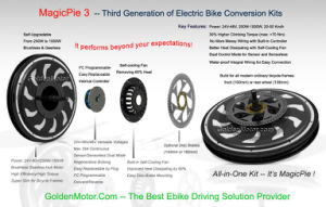 Programmable, Built-in Controller, Hub Motor E Bike Kit and Smart Pie Electric Bicycle/All in One Conversion Kit pictures & photos